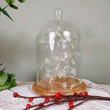 Glass Bell Jar With Led Lights